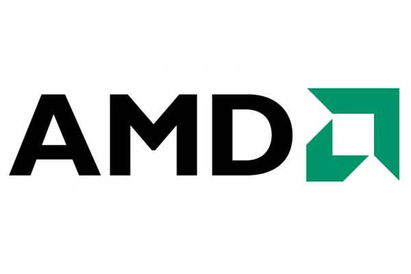 AMD raporları