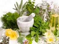 Hangi Bitkiler Zayıflamayı Hızlandırır?